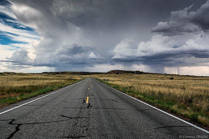 Fotografia di paesaggi con una strada tra i prati gialli e nuvole con acquazzoni all'orizzonte a canyonlands