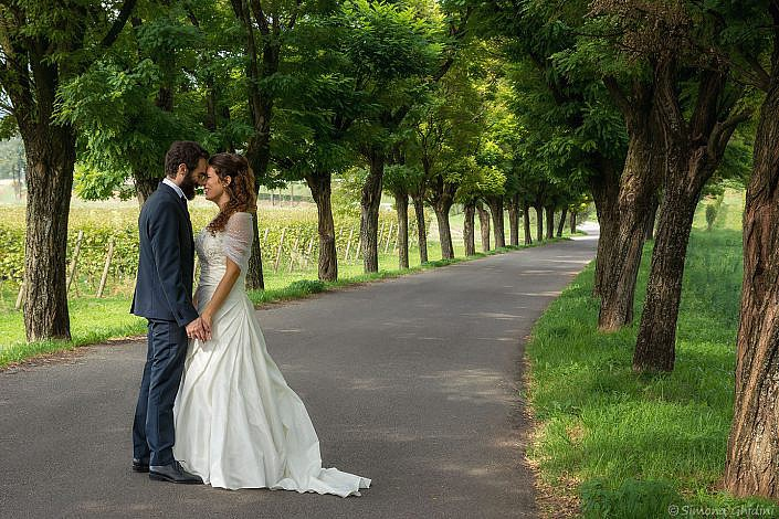 Servizio fotografico per matrimonio con sposi in viale alberato